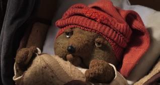 02-teddy2-photo-i-vit_