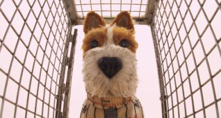 "Bill Murray as ""Boss"" in the film ISLE OF DOGS. Photo Courtesy of Fox Searchlight Pictures. © 2018 Twentieth Century Fox Film Corporation All Rights Reserved"
