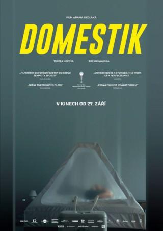 Domestik_poster_web